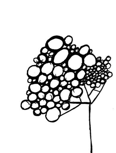 Bleistiftskizze eines Baumes der keine Blätter hat, sondern verschieden große Bälle